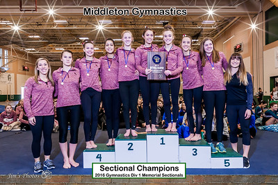 HS Sports - Gymnastics Sectionals - Feb 27, 2016