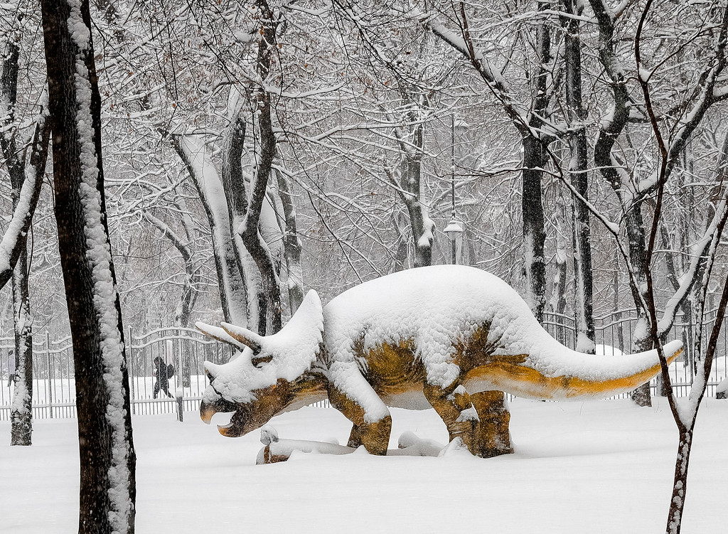 . A woman walks on a snowy path by a life size model of a dinosaur during a snow fall in Bucharest, Romania, Friday, Jan. 6, 2017. Large areas of Romania were affected by blizzards which prompted authorities to close several major roads. (AP Photo/Vadim Ghirda)