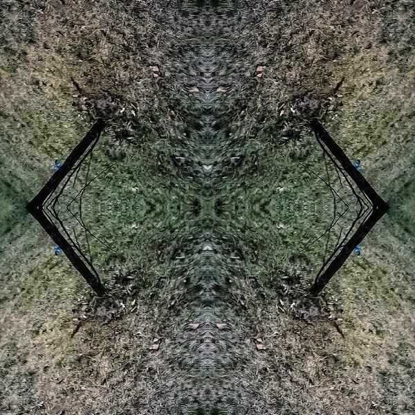 Mirror16-0018 16x16.jpg
