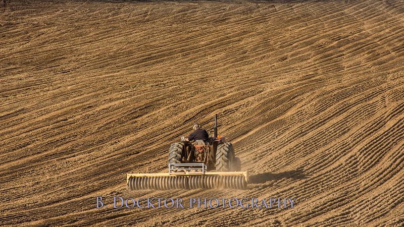 Hudson Valley Hops & Grains-26.jpg