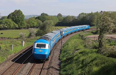 HSTs 2021-