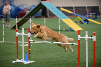 Tail Blazers AKC Agility Trial May 28-29