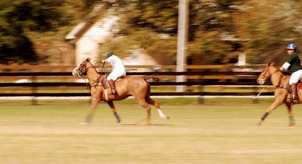 Sleepy Oaks Farm Polo Practice 2/4/07