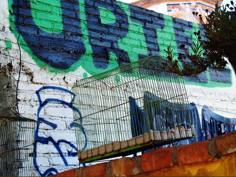graffiti grill lr.jpg