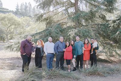 Holiday | Navarrete Family 2020