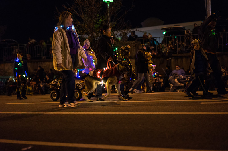 Light_Parade_2015-08115.jpg