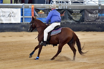TWO HANDED REINED COWHORSE