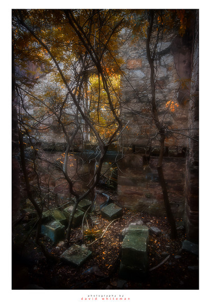 The Ruins in Autumn