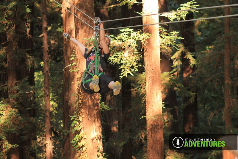 redwood_zip_1473459728699.jpg
