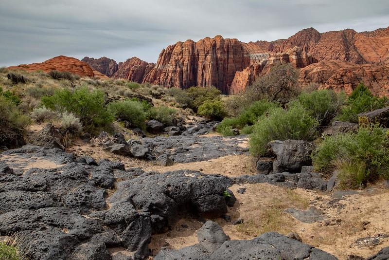 DA054,DT,Lava & Sandstone,Snow Canyon State Park, Utah .jpg