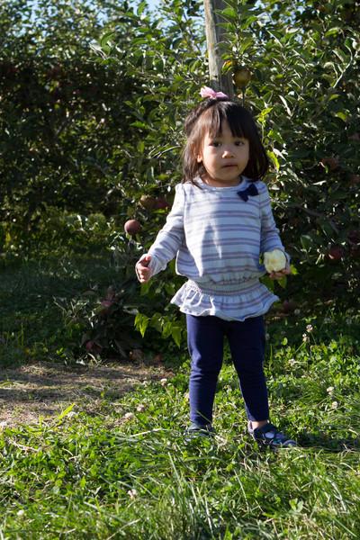 Terhune_Orchards-123.jpg