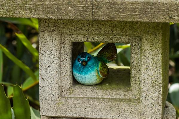 South Coast Botanic Garden_030714