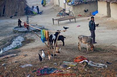 TRAIN TRIP:DELHI TO VARANASI