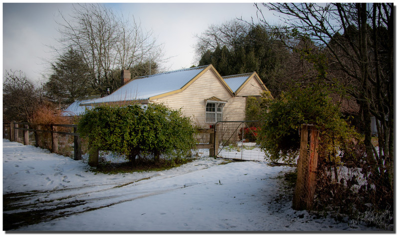 The Cottage on Porcupine Hill