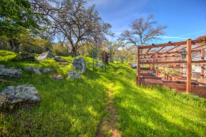3470 Patterson Way El Dorado Hills CA-40.jpg