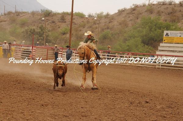 Sierra County 6-22-13 Steer Stopping