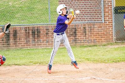 2020  Baseball & Softball