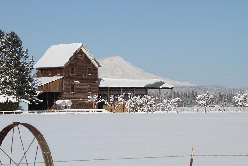 20100226_Snow Day_1304.JPG