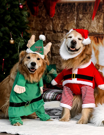 DEN Holiday Photo Shoots - EDITED