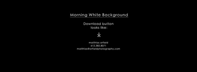 Morning - White Background