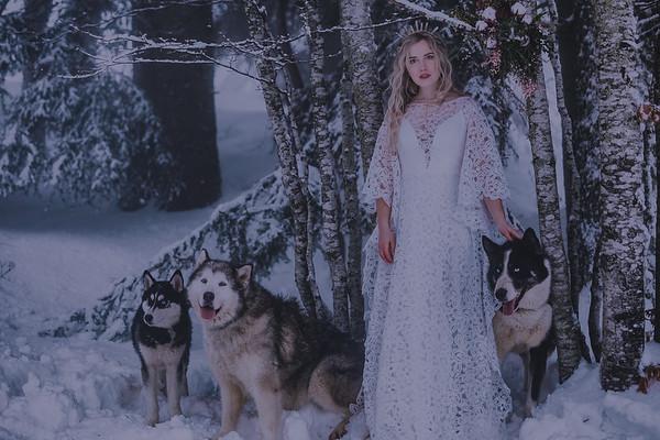 Le Bois aux Loups