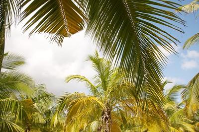 Filming in Malindi