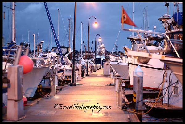 Fisherman's Terminal Outing