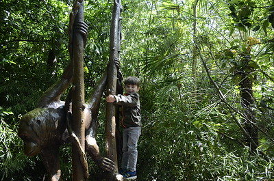 2015-05-15 Woodland Park Zoo