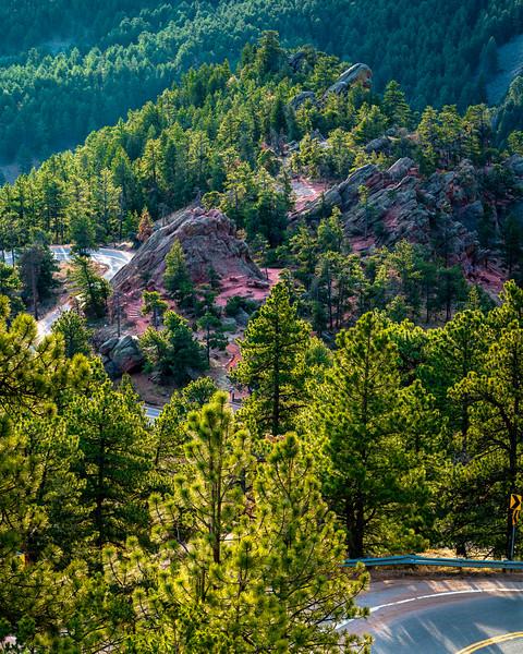 Green Feelings in Boulder Colorado-1.jpg