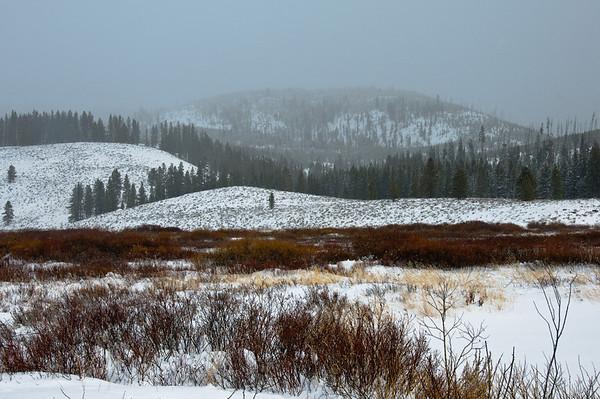 Cross Country Skiiing Yellowstone Dec 2009