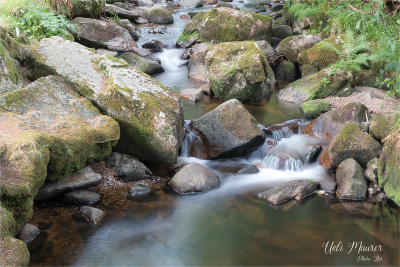 Fotoausflug Wasserfall Menzenschwand - 2015-07-15 - 1305-2.jpg