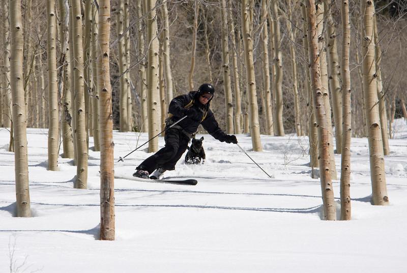 skiing661a.jpg