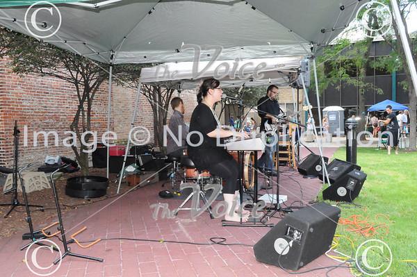 Aurora, IL Alley Art Festival 8-27-11