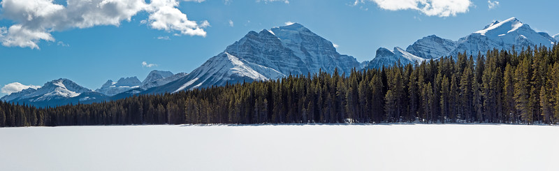 Three shot panorama, at Mud Lake on the Pipestone xc ski network near Lake Louise, March 8.