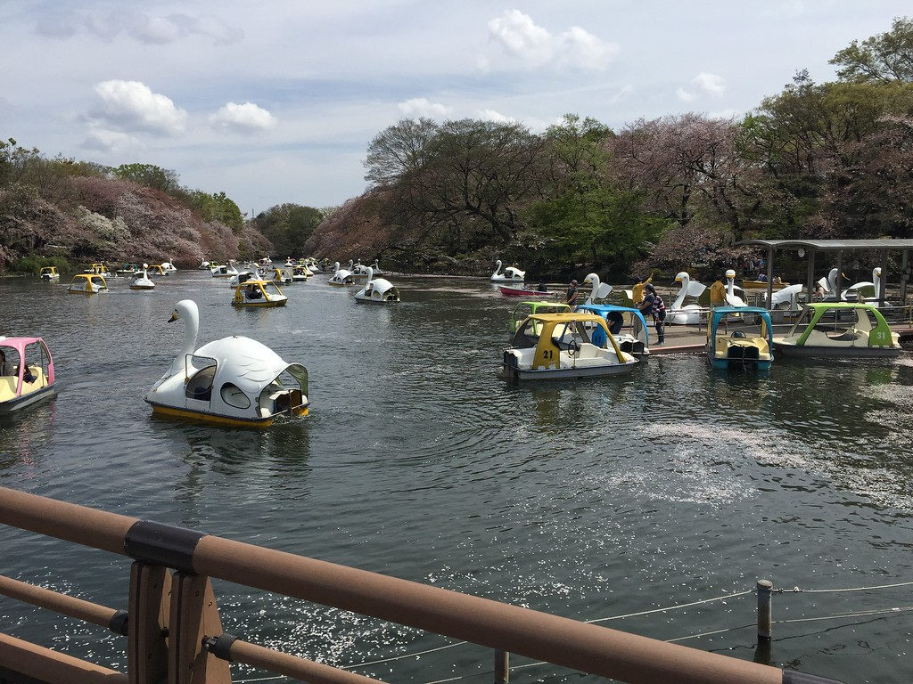 Swan boats on Inokashira Pond