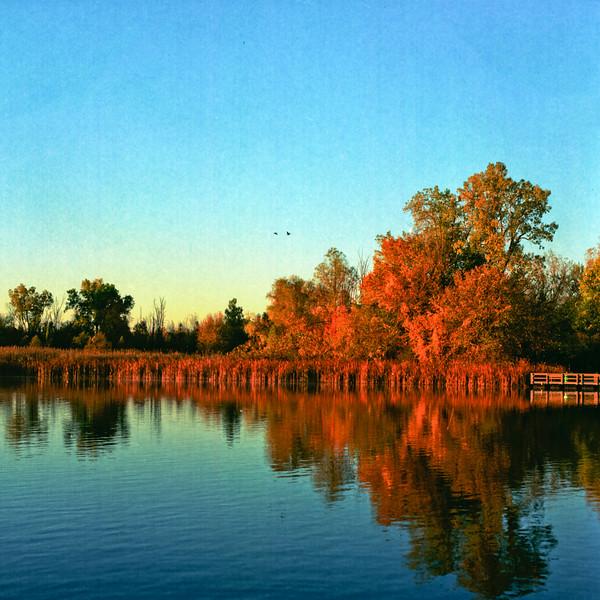 Autumn Hike 120 Film-00003.jpg