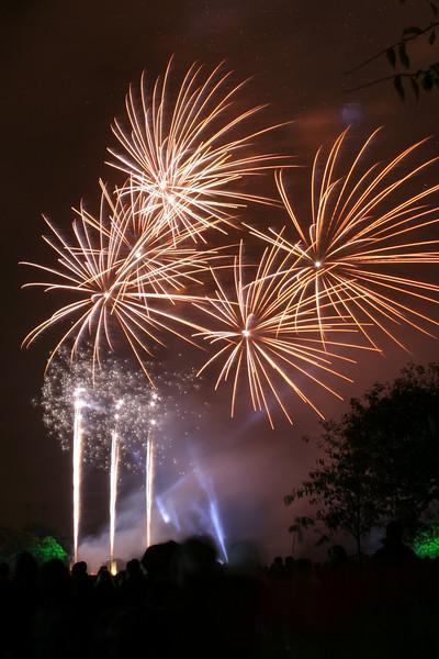 Battersea Park Fireworks 2008