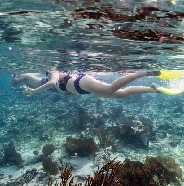 Snorkelling - page006.jpg