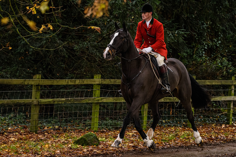 Fitzwilliam Opening meet Nov 2019-352-231.jpg