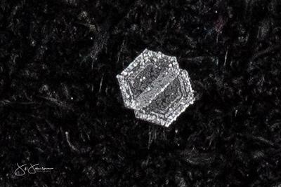 snowflakes-1621.jpg