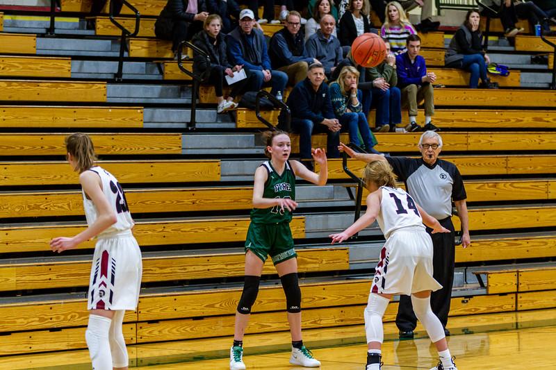 Holy Family Varsity Girls Basketball vs. New Prague, 1/24/20: Sophia Hall '23 (13)