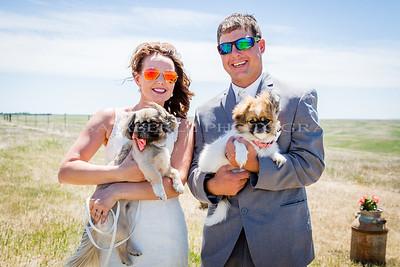 Kiley & Jesse's Wedding Photos