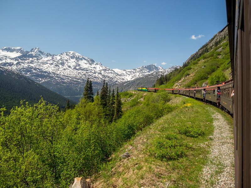 228 Alaska Train (1 of 1).jpg
