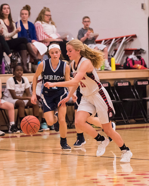 2019 JV Girls Basketball:  Hall-Dale vs Dirigo