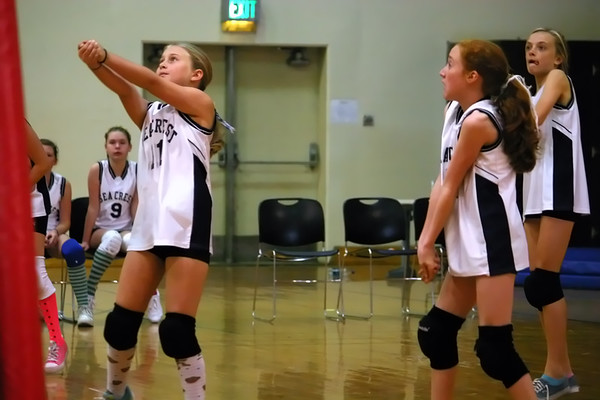 Sea Crest Volleyball May 2010