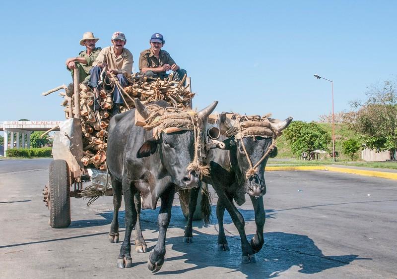 Cuba Carts-7.jpg