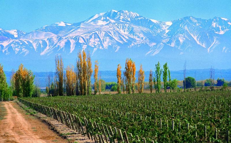 Cordón de Plata, Mendoza Argentina
