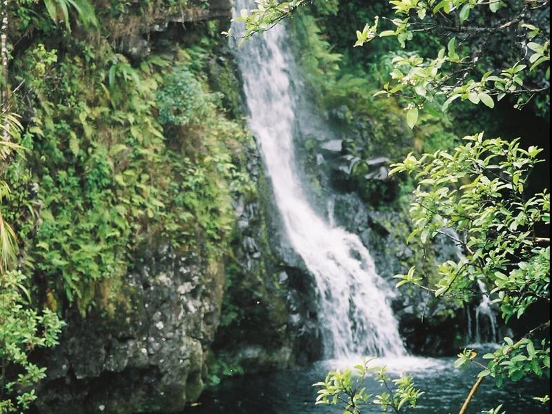Hawaii-197.jpg