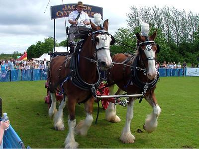 Eaglesham Fair - 18 June 2005