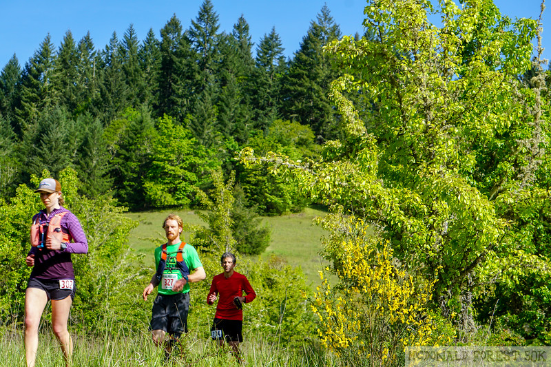 20190504.gw.mac forest 50K (22 of 123).jpg
